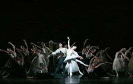Royal ballet performace