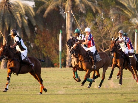 Polo at the Desert Palm