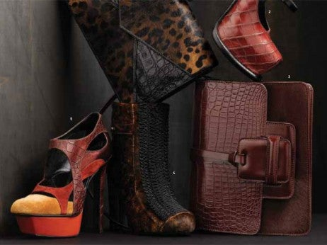 Luxury exotic animal skin handbags and high heel shoes