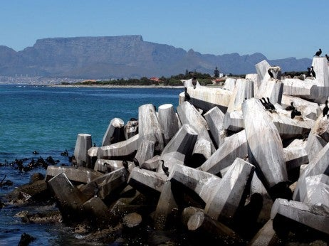 View from Robb en Island © Cape Town Tourism