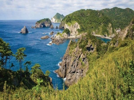 The Izu PenInsula where wIld dolPhIns lIve