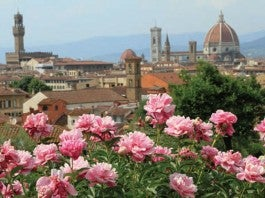 Useful Information in Florence