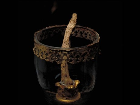 Galileo 's Mummified Finger , Museo Galileo
