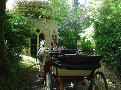 HORSE AND CARRIAGE IN SINTRA NATIONAL PARK