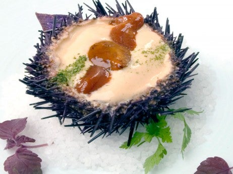 Inishmore Sea Urchin At Thornton's