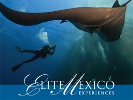 Elite Mexico Guides