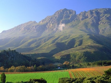 Cape Winelands, Stellenbosch