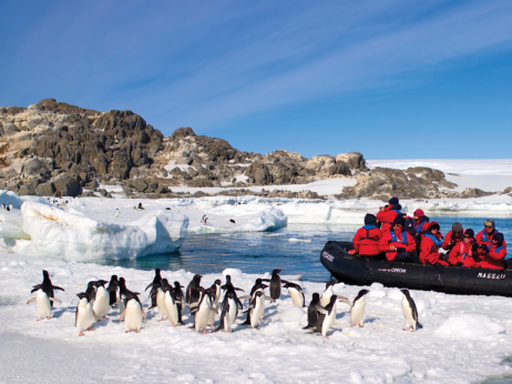 Penguin Encounter, Orion Expeditions