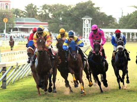 one sandy lane horse racing