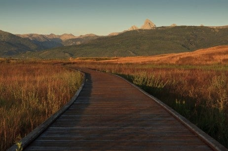 1-Boardwalk-in-Wildlife-Refuge