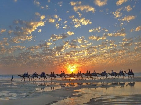 Image Credit: Broome Camel Safaris