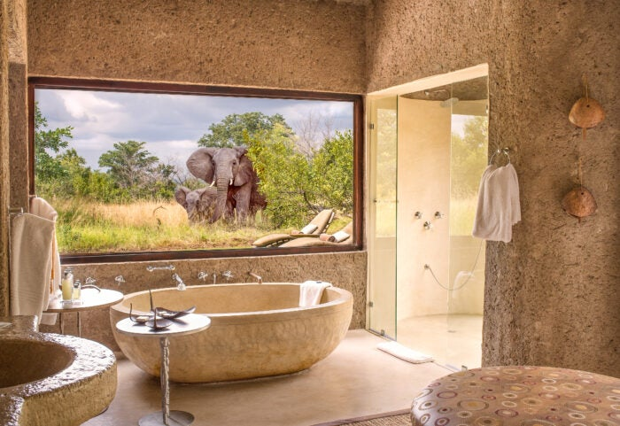 Elephant sighting through bathroom window at Sabi Sabi safari