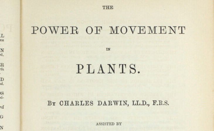 the power of movement plants charles darwin