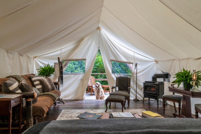 clayoquot wildlife holiday tent accommodation
