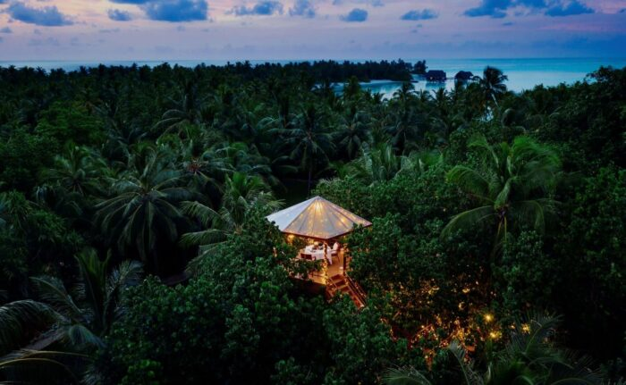 treehouse dining experience in the maldives