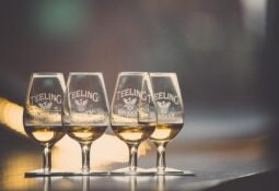 teeling whiskey tasting glasses on counter
