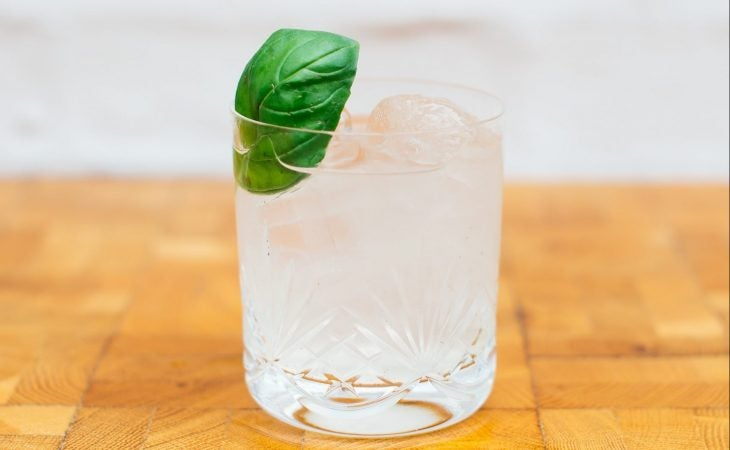 for the trees cocktail by sapling spirits