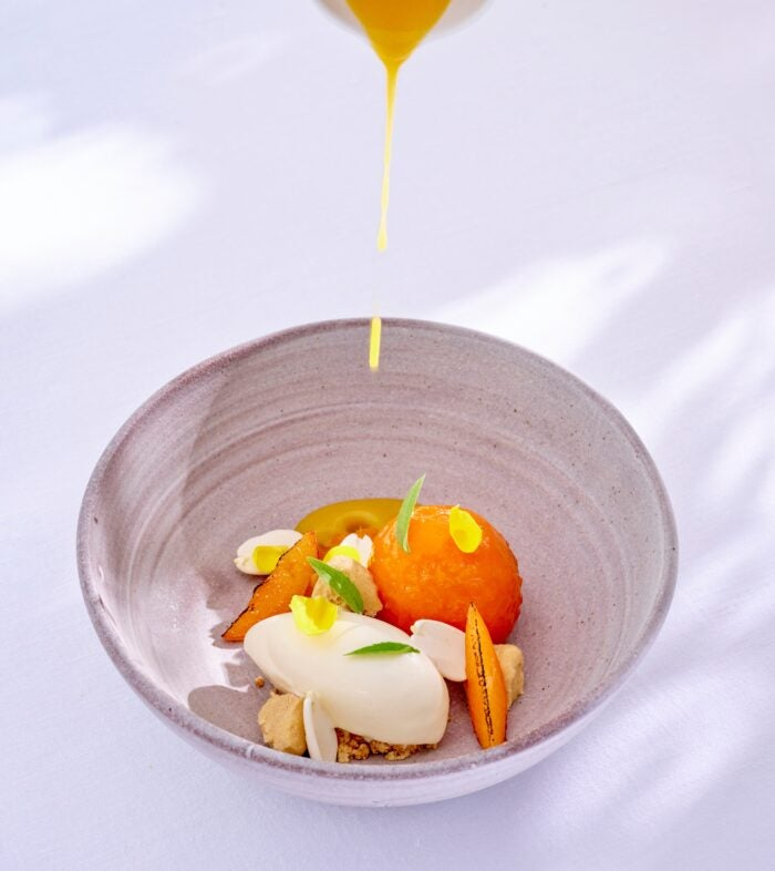 Guillaume Galoppini Apricot