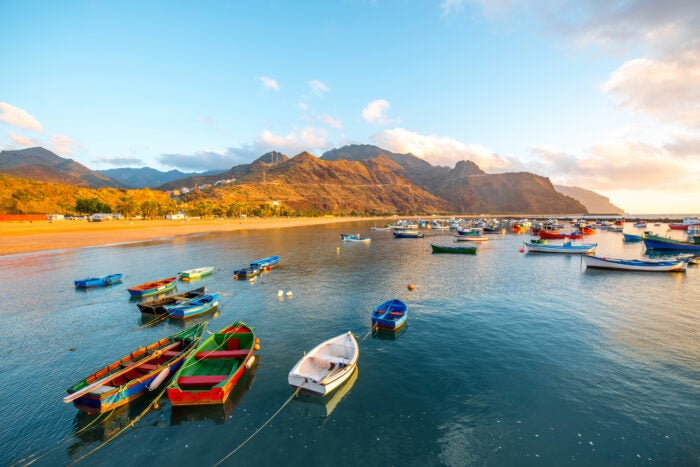 Boats on the waters of Tenerife - fishing in Spain