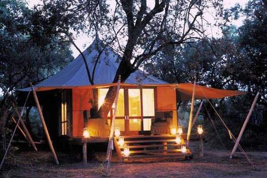 Ngala Tented C& Offers Luxury Accommodations with Eco-Friendly Design & Ngala Tented Camp Offers Luxury Accommodations with Eco-Friendly ...
